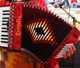 Learn the Piano Accordion
